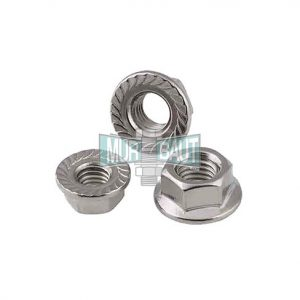 mur flange nut stainless